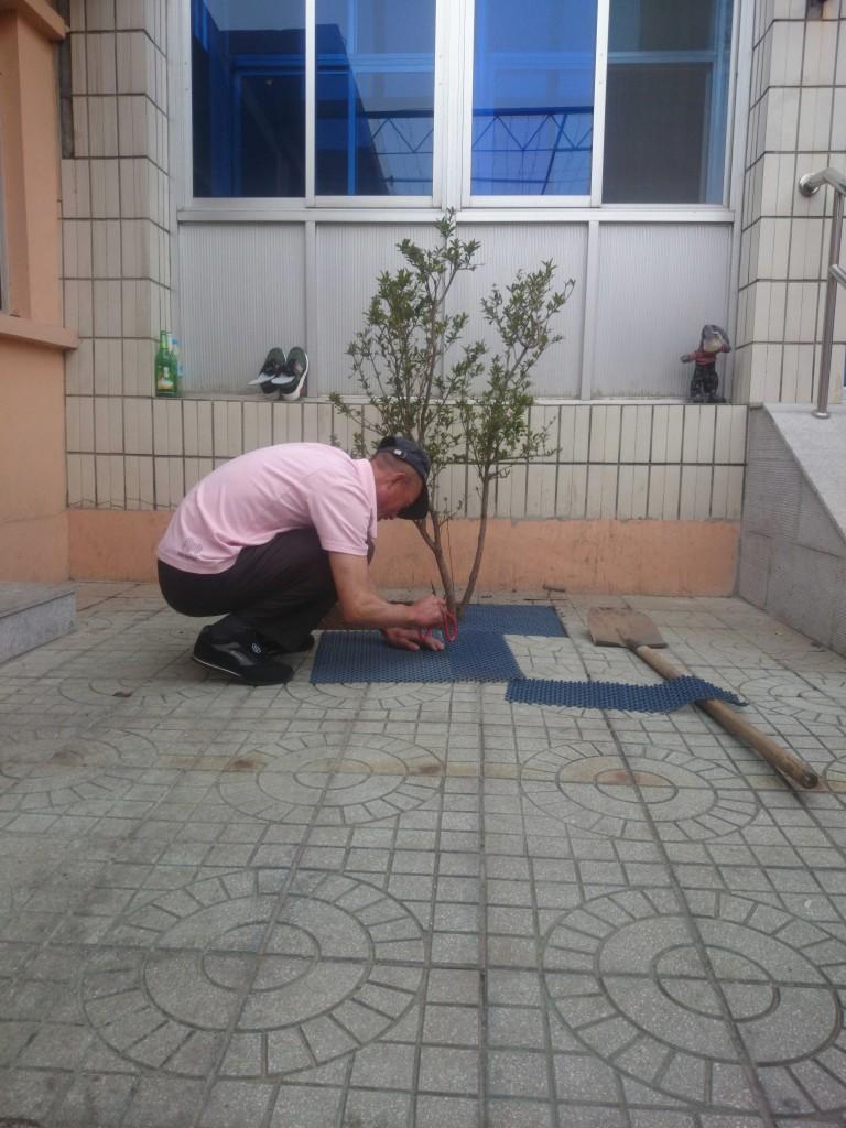 勤劳的大爷在种树,这棵石榴树和我们的产品几乎同时诞生。一起加油成长吧!